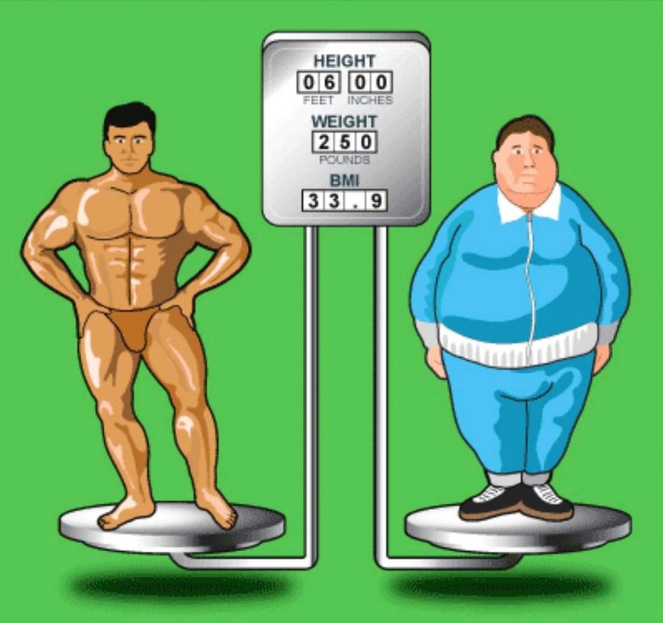 BMI-Body-Composition-Comparison